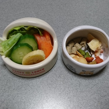 今日(5/11)の食事(^○^)ダイエット食にし始め、野菜と果物を主体に。生野菜が好きなジジには良いのかも。(^o^)v