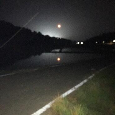 ムサシ(下の方)と赤い月と水田に映る赤い月