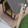 犬小屋と犬をつなぐポール。つなぐリードは鎖で!