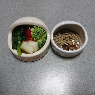 メタボになってるジジのダイエット食事(小松菜、ブロッコリー、パプリカ、メロン、ダイエットペレット、栗少々)