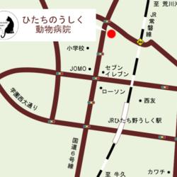 いばらきいきものねっと☆譲渡会☆ サムネイル2