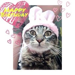 Happy Birthday,Rudy‼︎