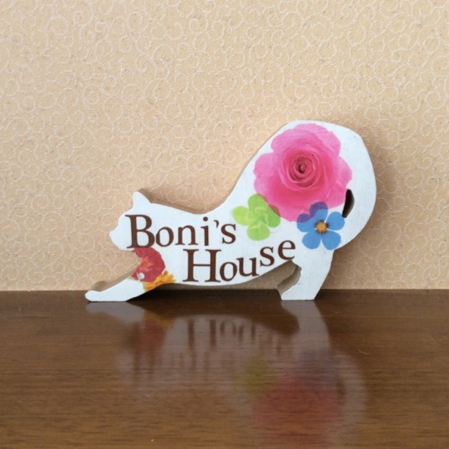 自宅開放型保護猫カフェ Boni's Houseのカバー写真