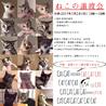 *愛らしい子猫8頭* サムネイル2