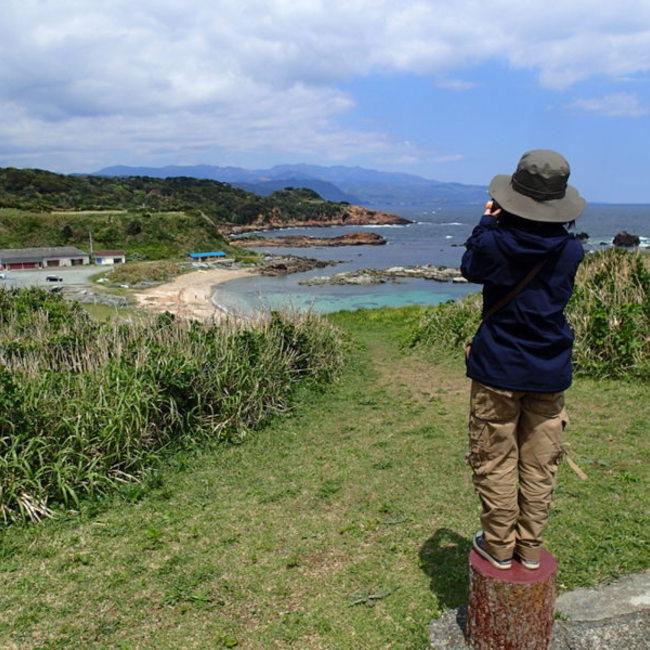 日本暖児のカバー写真