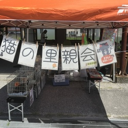 Mother's market in Nankoku 1周年感謝祭