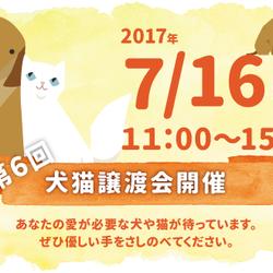 第6回犬猫譲渡会開催します(大阪吹田)