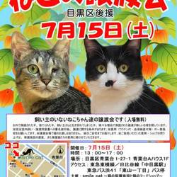 ★7月15日(土)「ねこの譲渡会(目黒区後援)」smile cat@中目黒(室内)