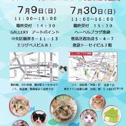 7月30日(日)第14回◆ミャオ!ねこのおうち◆譲渡会◆池袋会場