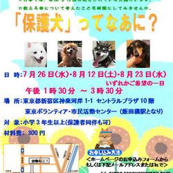 夏休み・自由研究『保護犬ってなあに?』