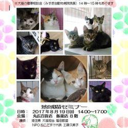 いぬ&ねこ譲渡会@丸広デパート飯能店8階