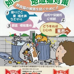 地域猫セミナー@飯能市役所 本庁舎別館2階 会議室 サムネイル3