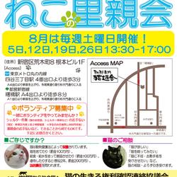 8月5日(土)地域猫から社会猫へ 四谷猫廼舎(ねこのや)里親会(ボランティアも募集中)