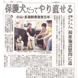 保護犬の会in茅ヶ崎