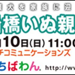 9月10日ちばわん『船橋いぬ親会』開催のご案内