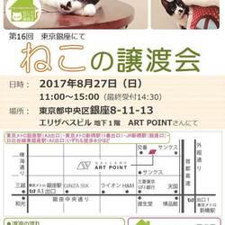 銀座で猫ちゃんの譲渡会!8/27