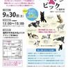 パニャリンピック at 福岡市