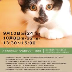 刈谷で開催!!猫の譲渡会