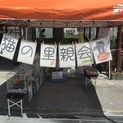 Mother's market in Nankoku