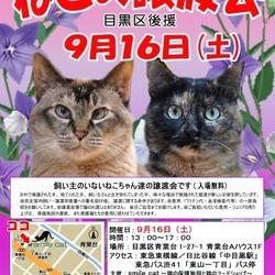 ★9月16日(土)「ねこの譲渡会(目黒区後援)」smile cat@中目黒(室内)