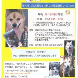 東松山コン太の会譲渡会