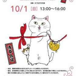 第10回福島の猫の譲渡会 @浅草