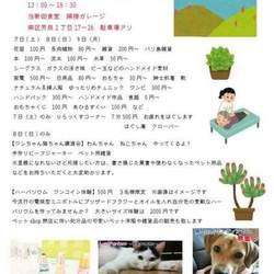 Last Partner~保護犬を家族に~