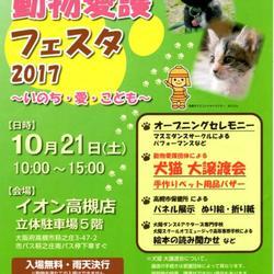 動物愛護フェスタ2017 犬猫大譲渡会参加