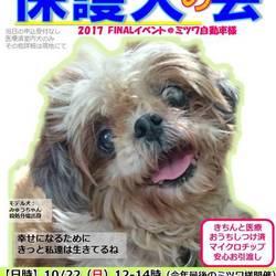 GO!保護犬の会@静岡県小山町ファイナル
