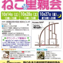 10月14日(土) 地域猫から社会猫へ FIPフリー 四谷猫廼舎 里親会(ボランティア募集中)