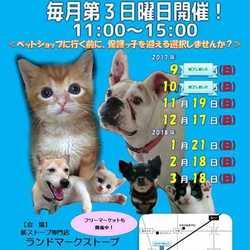 静岡県富士市にて「第4回定期犬猫譲渡会」