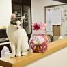 色白美猫女子 名古屋から サムネイル5