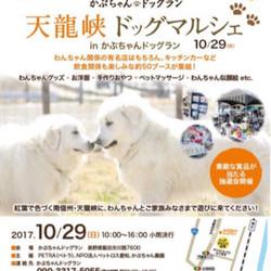 10/29(日)天龍峡ドッグマルシェ