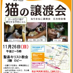 第1回ねりまねこ譲渡会・江古田会場