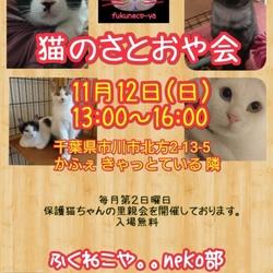 第21回ふくねこやneko部 保護猫さとおや会