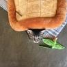 亀の真似遊び。顎乗せマットの下に潜る遊びです。
