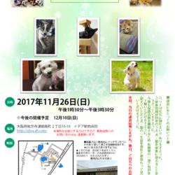 ひなたぼっこの会(犬と猫の譲渡会&フリマ)