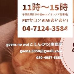猫の譲渡会 goens no wa(ごえんのわ)