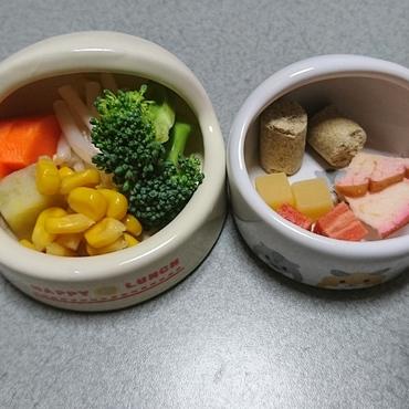 今日(11/22)の食事 生野菜とペレット、カリカリリンゴ、ビーフ、チーズ  大好きなものばかりだね(^w^)