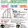 12月15日(金) 地域猫から社会猫へ 四谷猫廼舎 ナイター 里親会(ボランティア募集中)