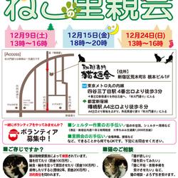 12月24日(日祝) 地域猫から社会猫へ FIPフリー 四谷猫廼舎 里親会(ボランティア募集中)