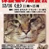 ニャン友ねっとわーく北海道 保護猫の譲渡会