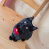 元気で懐こい黒猫の はちお君 ♪ サムネイル6