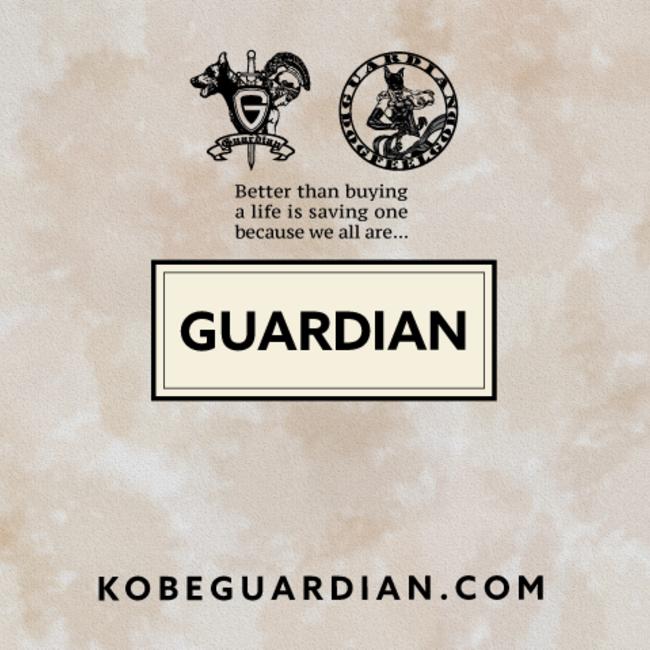 一般社団法人GUARDIANのカバー写真