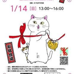 第12回 福島の猫の譲渡会 @新宿 サムネイル1