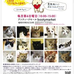Bootymarket × [sakuraneko] 猫の譲渡会