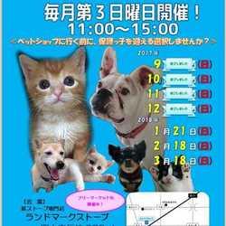 静岡県富士市にて「第6回定期犬猫譲渡会」