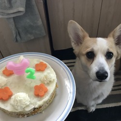 はなちゃん、happy birthday!