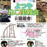 1月19日(金) 地域猫から社会猫へ 四谷猫廼舎 ナイター 里親会(ボランティア募集中)