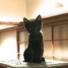 個性が光る♡ツヤツヤスレンダーな黒猫 サムネイル6